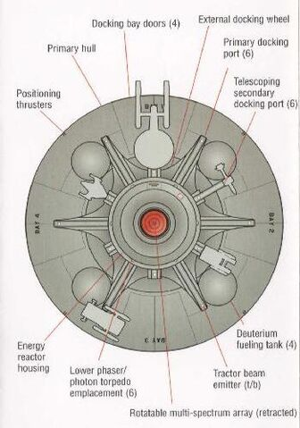 File:Vanguard ventral view.jpg