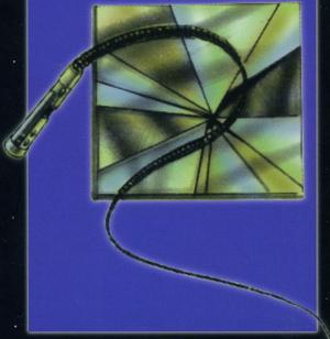 File:Rodian Cryogen Whip.jpg