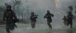 Rebel Marines on Scarif
