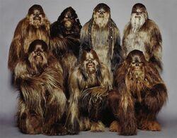 WookieeWarriors.jpg