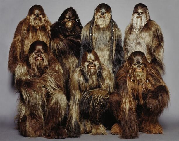 File:WookieeWarriors.jpg