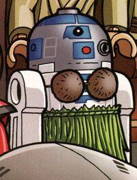 Hula R2
