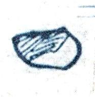 File:Rhydonium chrome.jpg