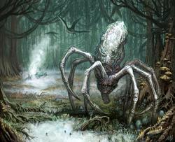 Knobby White Spider BTS