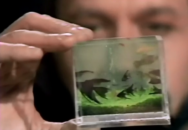 File:Pocket-sized aquarium.png