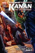 The Last Padawan Cover 2
