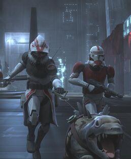 K9 Clone Trooper