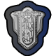 Skyward Collapse Badge 1
