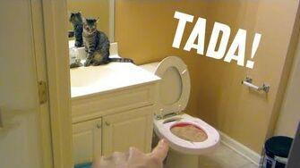 Tada! Toilet! (Day 1072 - 10 31 12)