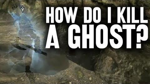 HOW DO I KILL A GHOST?!