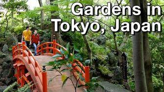 Koishikawa Kōrakuen Gardens 4K Vlog • 5.16