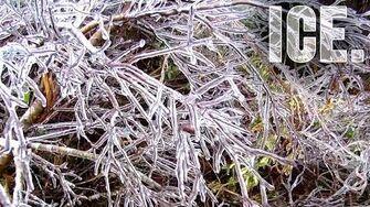 ICEPOCALYPSE! (Day 1541 - 2 12 14)