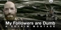 My Followers are Dumb: A Skyrim Montage