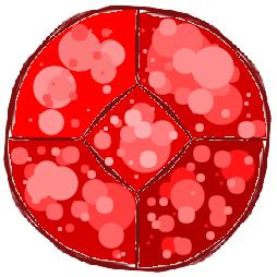 Fichier:Ruby gem.png