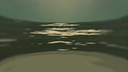 S1 E16 Fluffy looks at the ocean