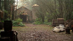 Enchanted Forest Chapel