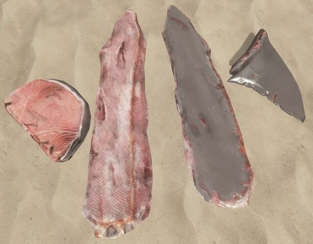File:Shark meat.jpg