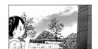 Ichigo Mashimaro Chapter 036