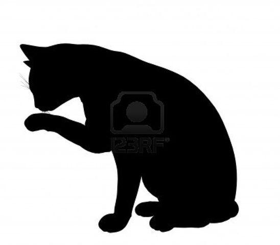 File:Cat Siloette.jpg