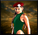 File:Sfm cammy.png