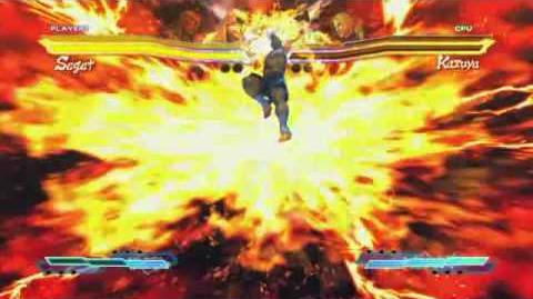 Sagat's Super Art and Cross Assault in Street Fighter X Tekken