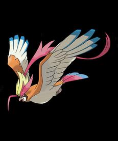 Birdjesus