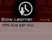 SlowLearner