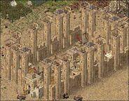 Caliph 1 480