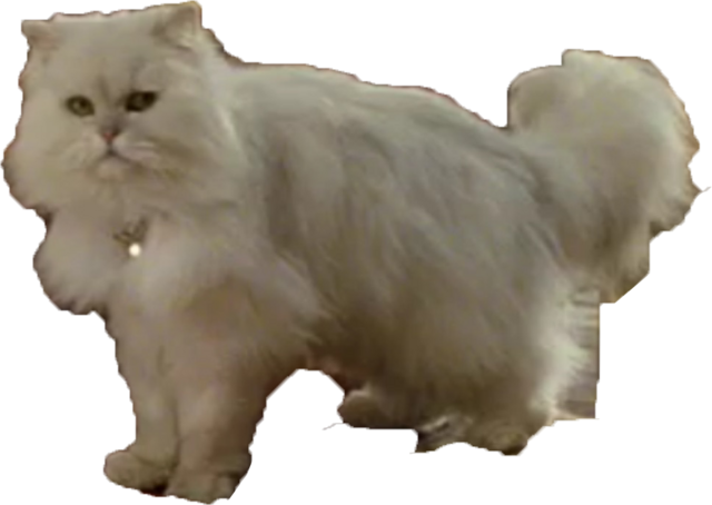 File:Snowbell.png