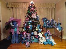 WE WISH YOU A TRIXIE CHRISTMAS