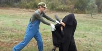 Slap Combat