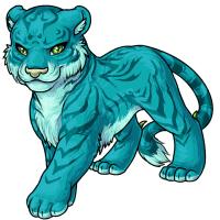 Tigrean aqua