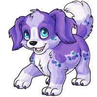 Ruffie lilac