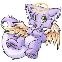 Torrey angelic