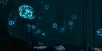 Deep Grand Reef