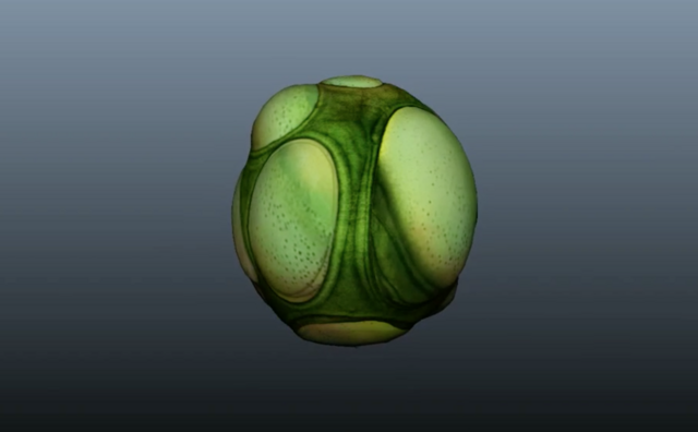 File:Subnautica egg1.png