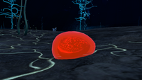 Blood Oil Seabed
