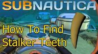 Subnautica - How To Get a Stalker Tooth