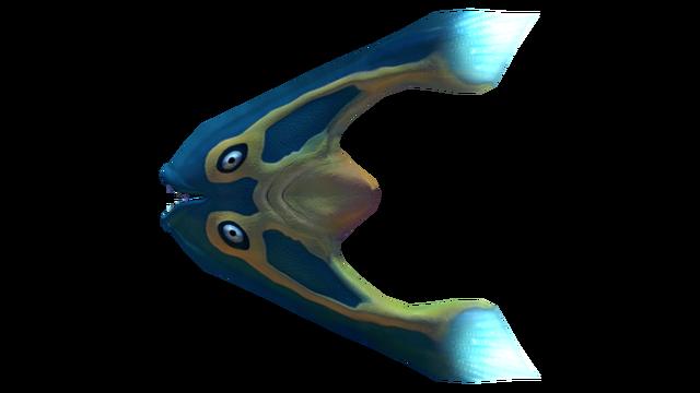 Файл:Boomerang Fauna.png