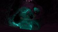 Mushroom Caves