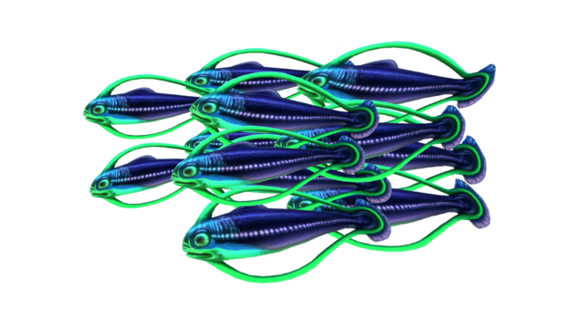 Файл:Shoal of Fish Fauna.png