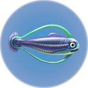 File:Hoopfish.png