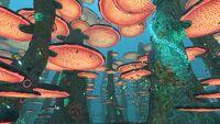 MushroomForestOverview