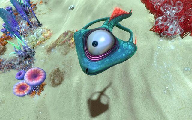 File:Life-form spadefish.jpg