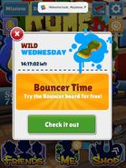 Bouncer20140507
