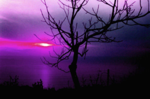 File:A Sunset is a colored poem that ends up Amethyst.jpg