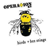 BIrds + Bee Stings Alternate Cover