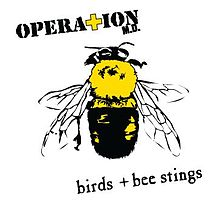 File:BIrds + Bee Stings Alternate Cover.jpg