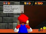Princess Toadstool's secret slide instructions 1