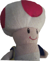 Toad PNG
